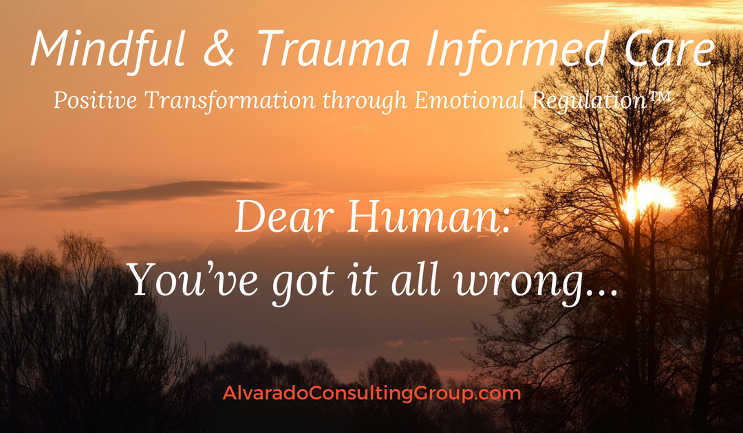 Dear Human: You've got it all wrong…