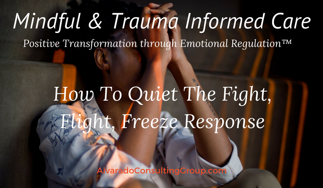 How To Quiet The Fight, Flight, Freeze Response