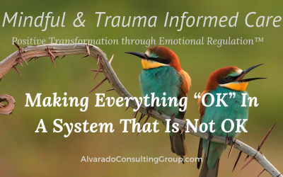 "Making Everything ""OK"" In A System That Is Not OK"
